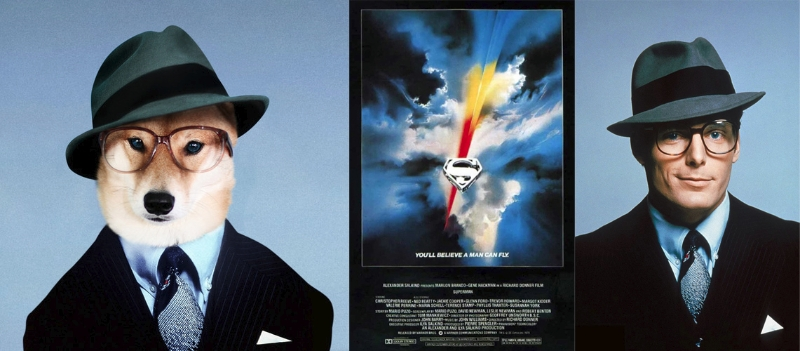 Bodhi de Menswear Dog caracterizando a Clark Kent de Superman / Foto: David Fung y Yenna Kim