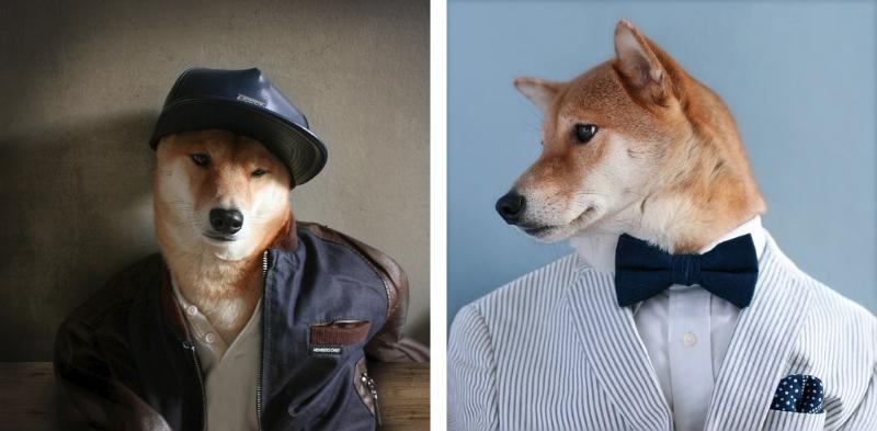 Bodhi de Menswear Dog es un perro muy trendy / Foto: David Fung y Yenna Kim