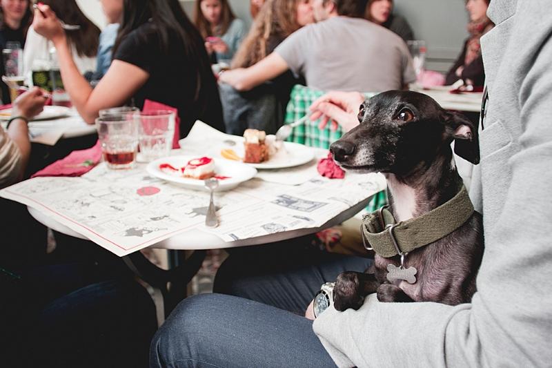 Otra imagen de Rambo compartiendo mesa con nosotros ¿no se le ve relajado y feliz? / Foto: Corina de Castro para Perricatessen