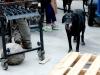 El perro de Vincent Arroyo Winery en acción
