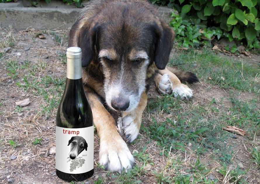 Tramp, el perro cuyo nombre lleva el vino Tramp 2011 / Perricatessen