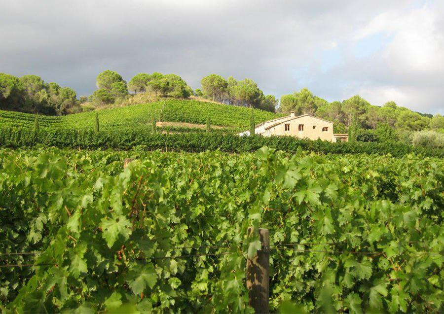 Can Grau Vell, una bodega con vinos excelentes / Perricatessen