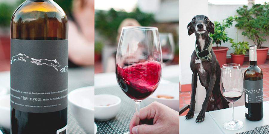 Momentos gastronómicos con nuestro perro Rambo / Perricatessen