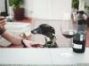 perricatessen-vino-perros_vinyeta_8