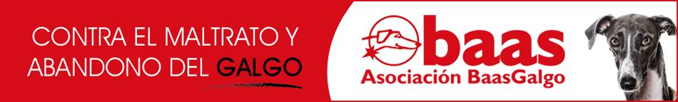 Asociacion Baas Galgo contra el maltrato de los galgos / Perricatessen