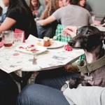 Primer dog-vermut, con Rambo en Bar Calders