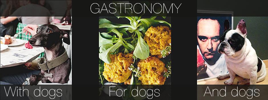 GASTRONOMY - DOG