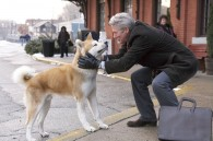Hachi-and-the-Professor-hachiko-perricatessen